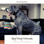 Big Dog Names