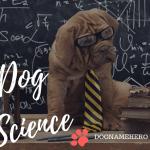 Geeky dog names