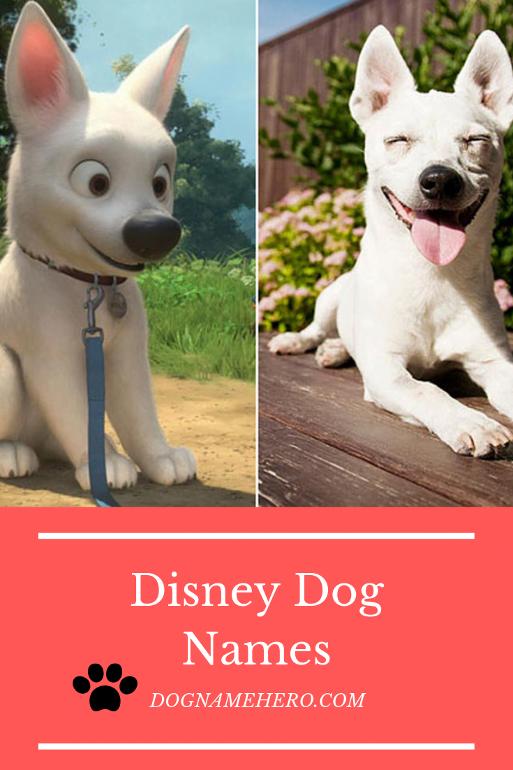 All Disney Dog Names