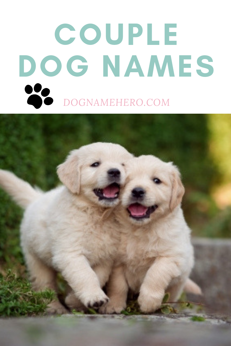 Couple Dog Names