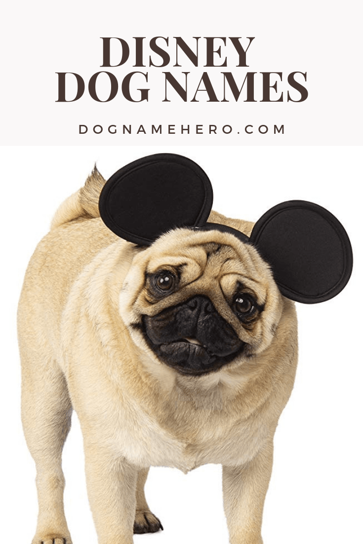 Disney Dog Names