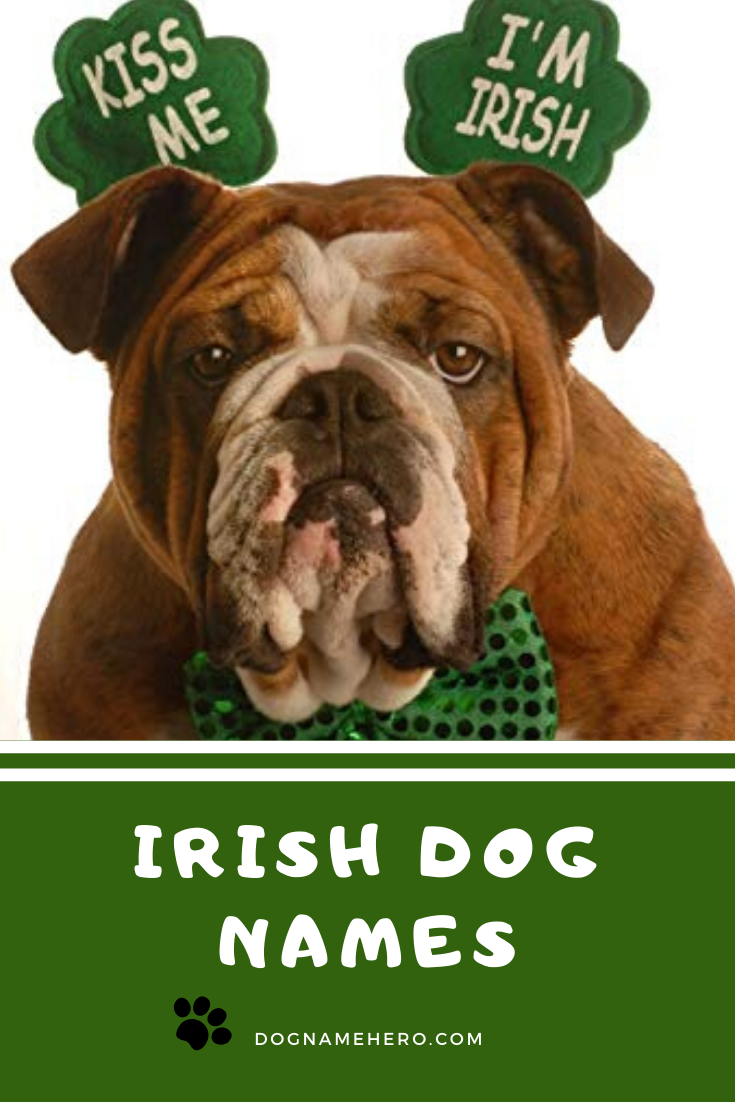 Irish Dog Names